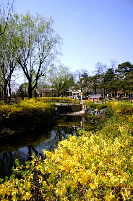 봄....