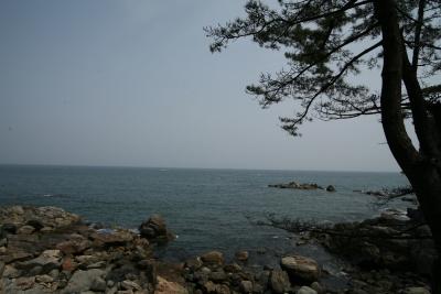 홍련암 앞 바다