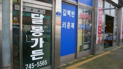 20071124_kanggyoung_03.jpg