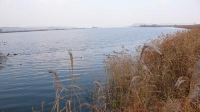 20071124_kanggyoung_07.jpg